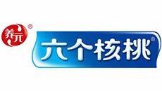 道成阿米巴成功案例-河北养元智汇饮品股份有限公司logo