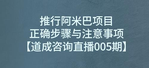 推行阿米巴项目正确步骤与注意事项【道成咨询直播005期】