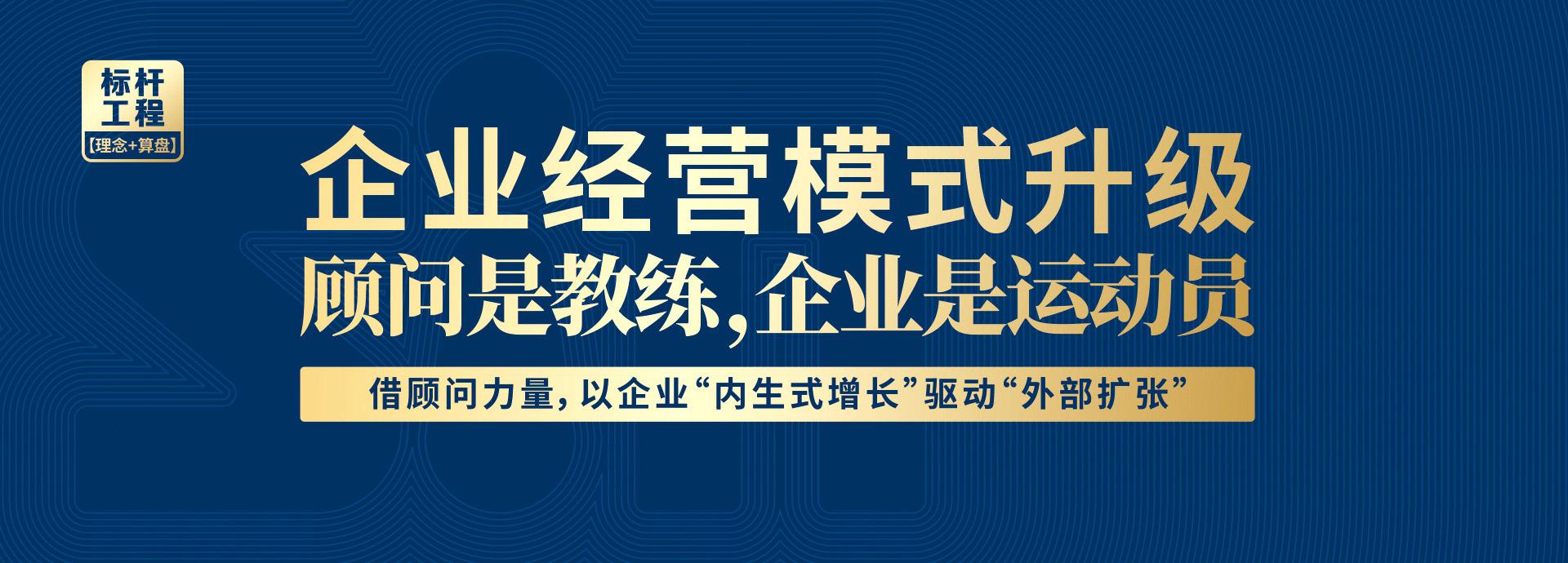 道成咨询-咨询项目-赋能式咨询banner
