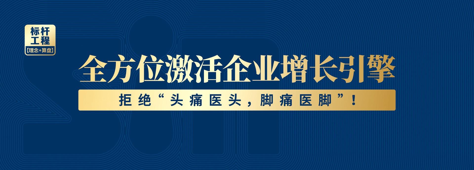 广州道成阿米巴咨询公司-阿米巴咨询项目-阿米巴系统经营咨询banner