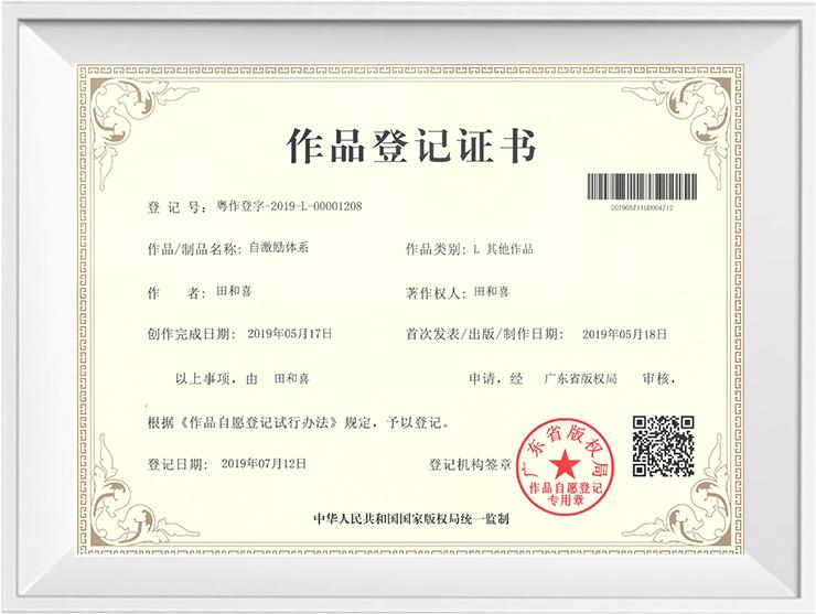 广州道成阿米巴-阿米巴经营版权证书-阿米巴作品登记证书-自激励体系